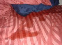 hijo hace pipi cama